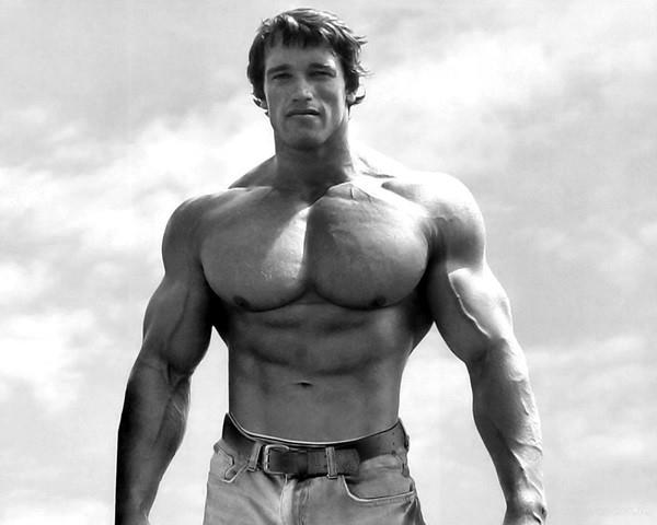 Arnold Schwarzenegger Bodybuilding Pictures - (20)