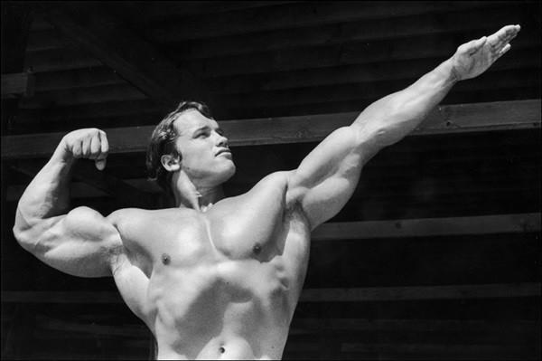 Arnold Schwarzenegger Bodybuilding Pictures - (25)