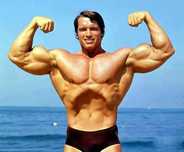 Arnold Schwarzenegger Bodybuilding Pictures - (3)