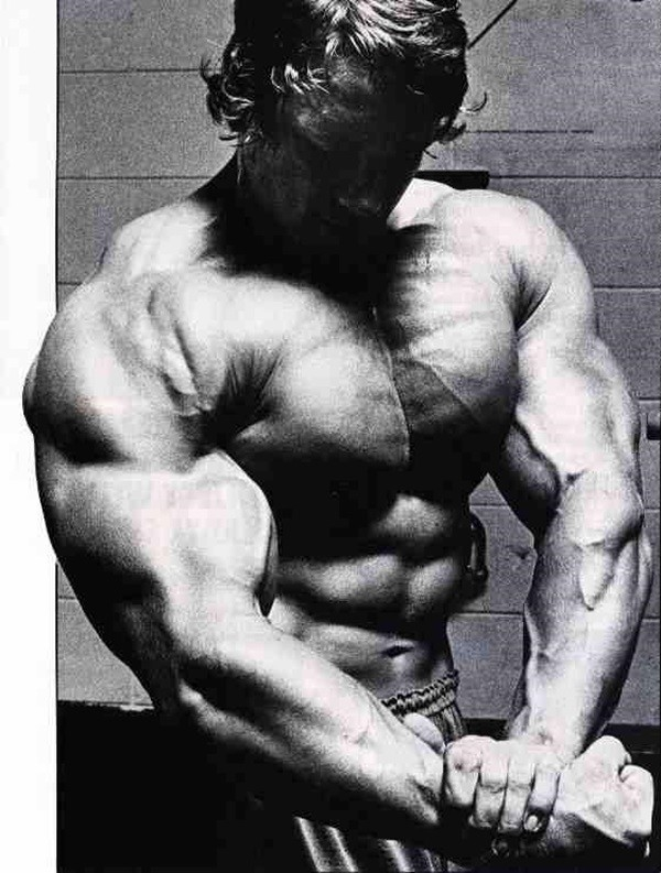 Arnold Schwarzenegger Bodybuilding Pictures - (34)
