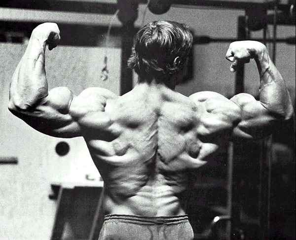 Arnold Schwarzenegger Bodybuilding Pictures - (4)