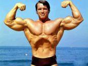 feature Arnold Schwarzenegger Bodybuilding Pictures