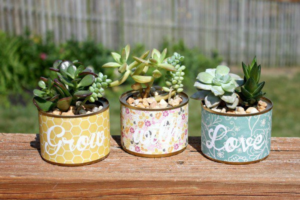 Innovative-Plant-Pots-ideas-14