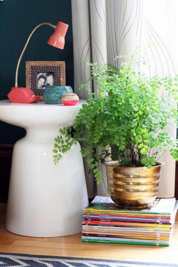 Innovative-Plant-Pots-ideas-15