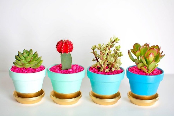 Innovative-Plant-Pots-ideas-18