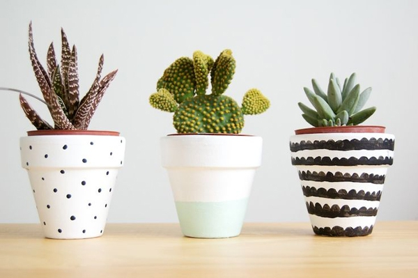 Innovative-Plant-Pots-ideas-22