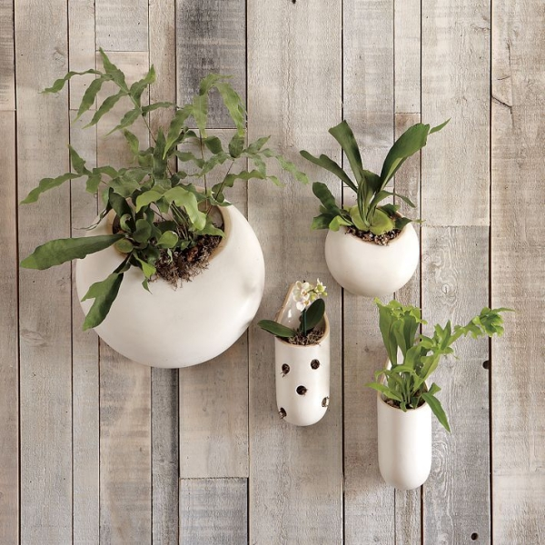 Innovative-Plant-Pots-ideas-29