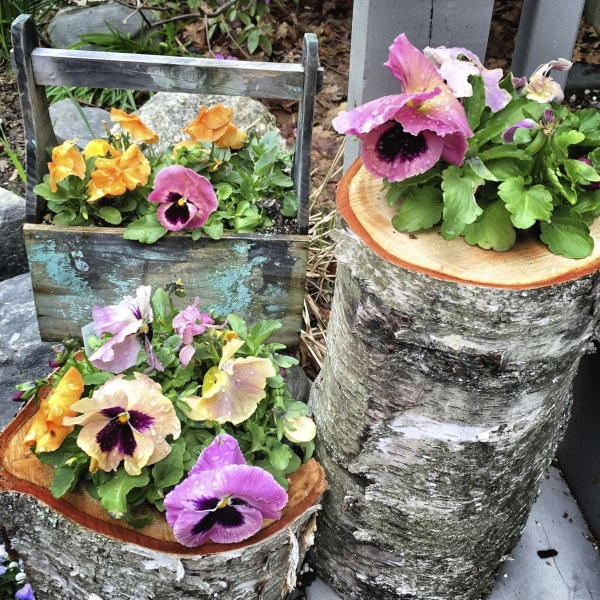 Innovative-Plant-Pots-ideas-32