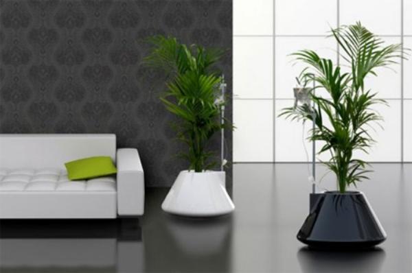 Innovative-Plant-Pots-ideas-38