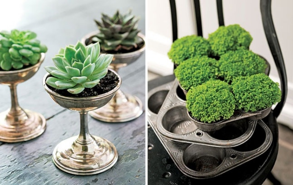 Innovative-Plant-Pots-ideas-4