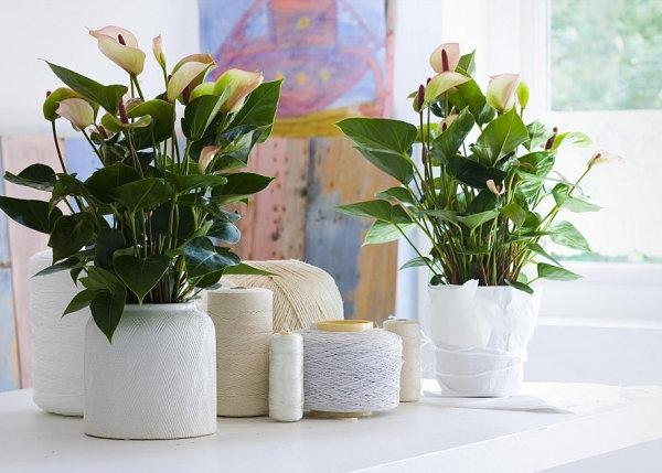 Innovative-Plant-Pots-ideas-40