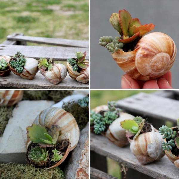 Innovative-Plant-Pots-ideas-5