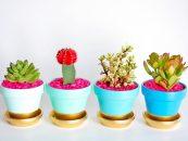 Innovative-Plant-Pots-ideas-feature