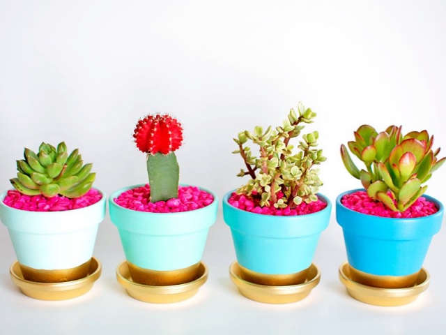 40 Innovative Plant Pots ideas
