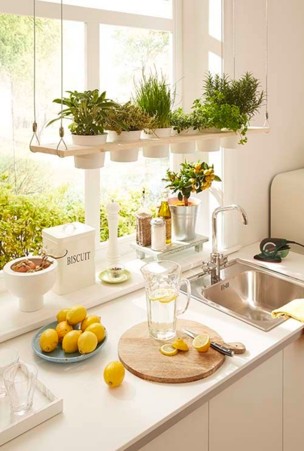 Super-Creative-Vertical-Garden-Ideas-11