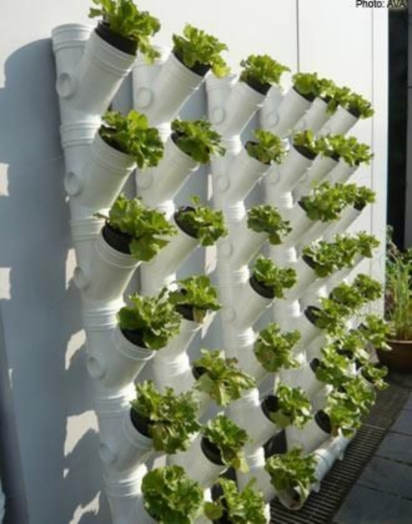 Super-Creative-Vertical-Garden-Ideas-15
