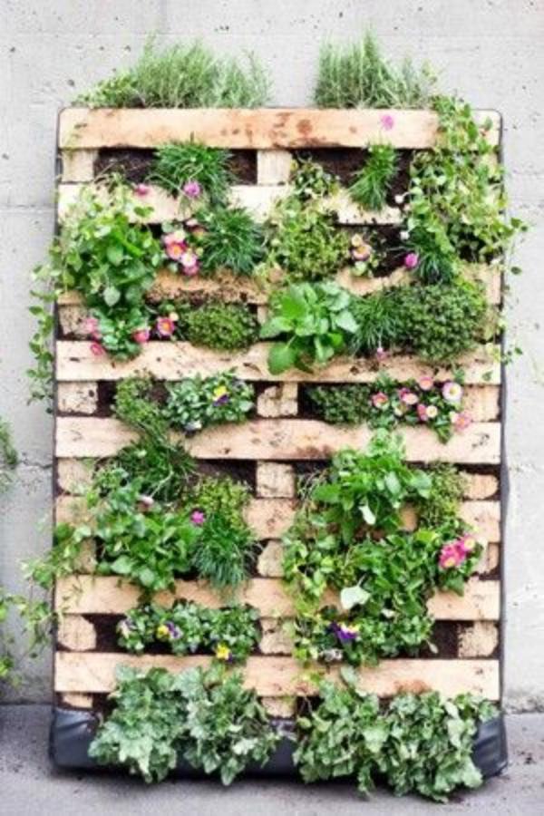 Super-Creative-Vertical-Garden-Ideas-3
