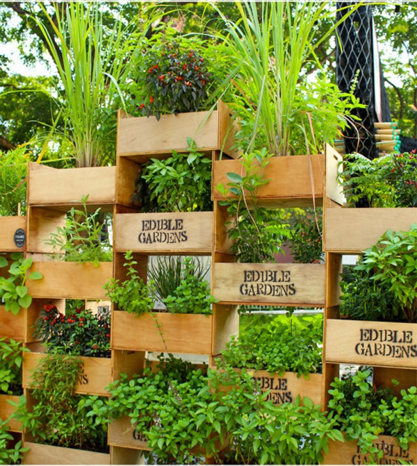 10 Super Creative Vertical Garden Ideas