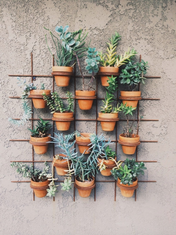 Super-Creative-Vertical-Garden-Ideas-5