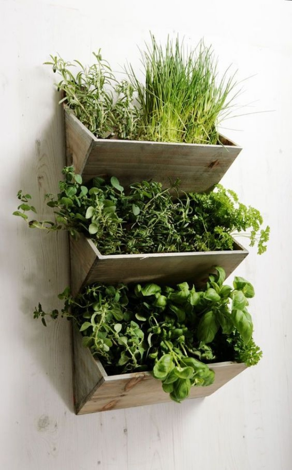 Super-Creative-Vertical-Garden-Ideas-6