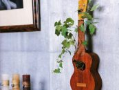 Super-Creative-Vertical-Garden-Ideas-feature