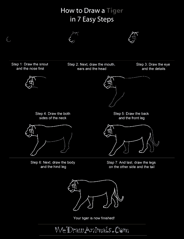 Quick-How-to-Draw-an-Animal-Cheat-Sheet