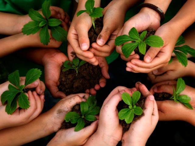 30 Best World Environment Day Slogans