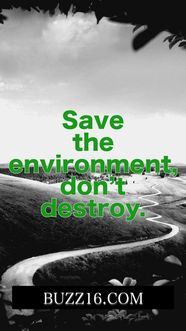 Best-World-Environment-Day-Slogans